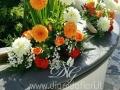 PicsArt_1421753689376_1