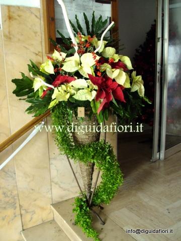 I fiori di Dicembre
