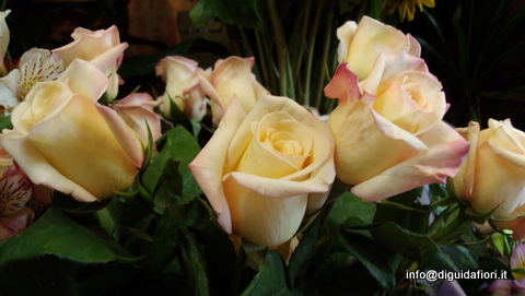 I fiori di maggio – Fiori per matrimonio